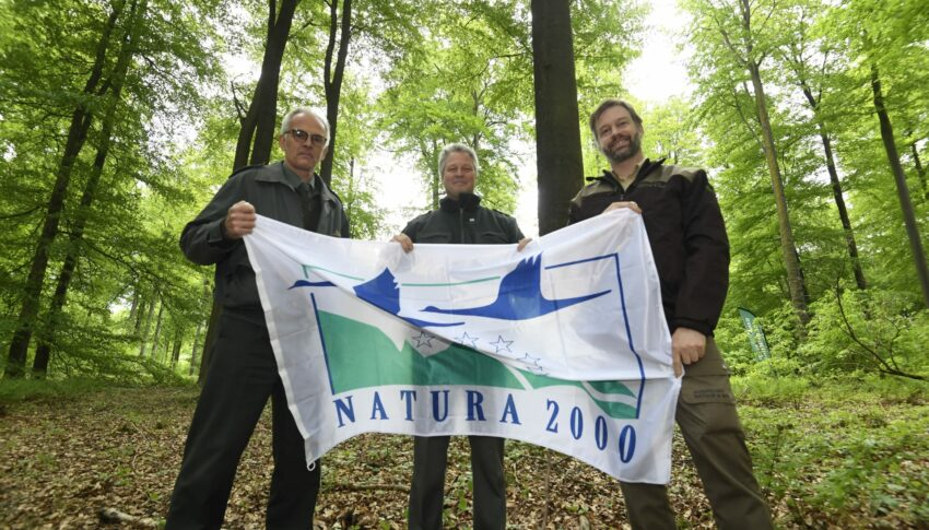 Sonian Forest gathering celebrates Natura 2000 Day